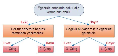 SolunumSistemiTest-1-soru3